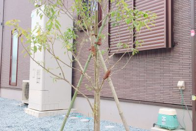 千葉県旭市 【シンボルツリーを彩る花壇】